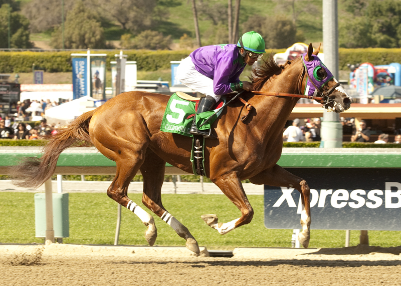 Stable Notes By Ed Golden Sunday January 4 2015 Santa