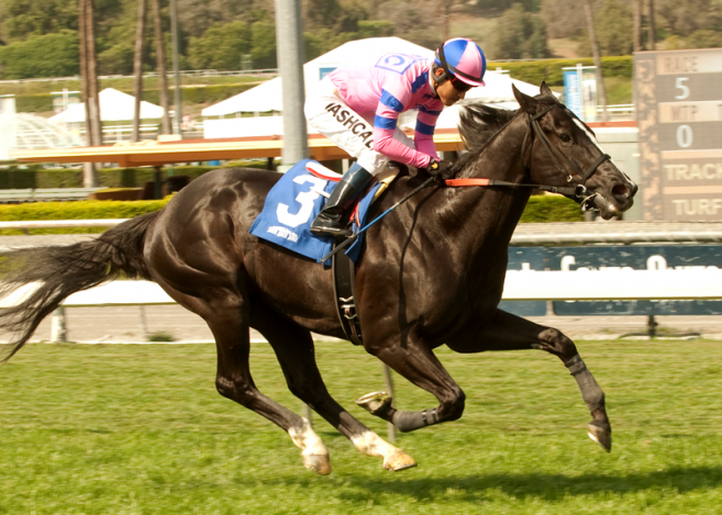 Stable Notes By Ed Golden Friday February 20 2015