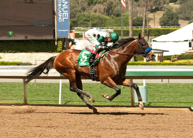 Heavily Favored One Lucky Dane Makes Lead Amp Demolishes