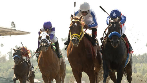 Can you bet on trackside online plus minus points betting tips