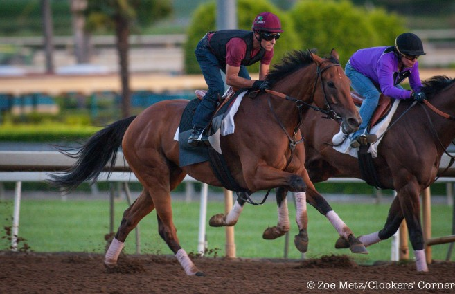 Two Time Eclipse Champion Beholder Seeks Record Third