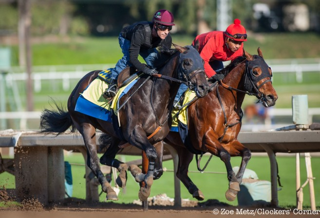 Stable Notes By Ed Golden Sunday January 31 2016