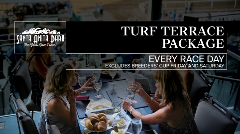 Turf Terrace Package