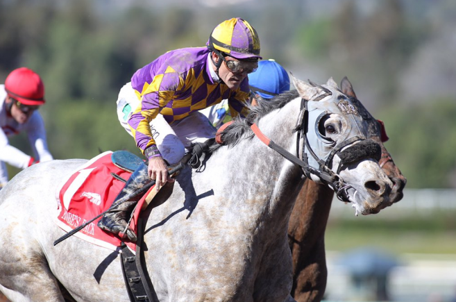 Palos Verdes Stakes Quotes Sunday February 7 2016