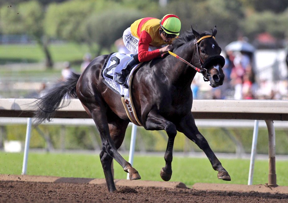 San Felipe Stakes Quotes Saturday March 12 2016 Santa