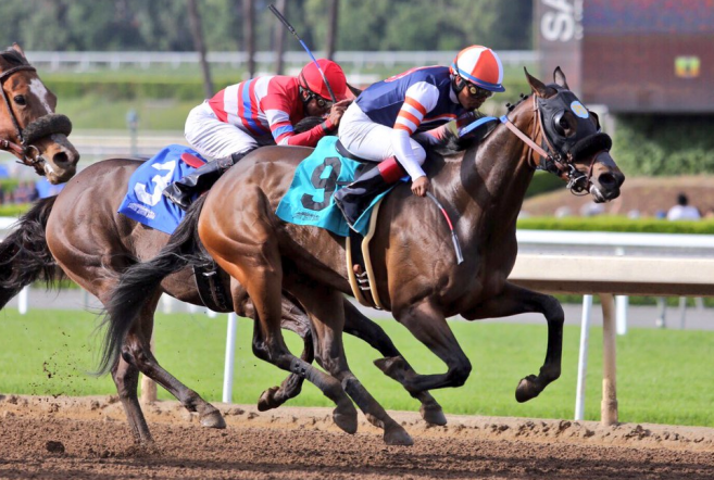 Dream Of Summer Stakes Quotes Sunday March 27 2016
