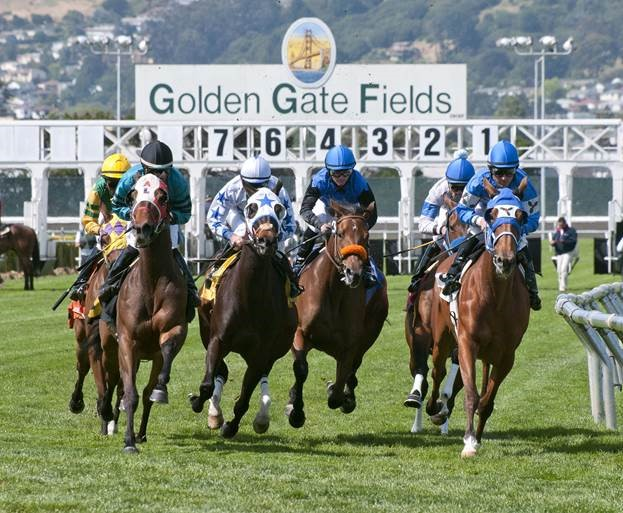 Golden Gate Fields To Broadcast In Hd Beginning March 17