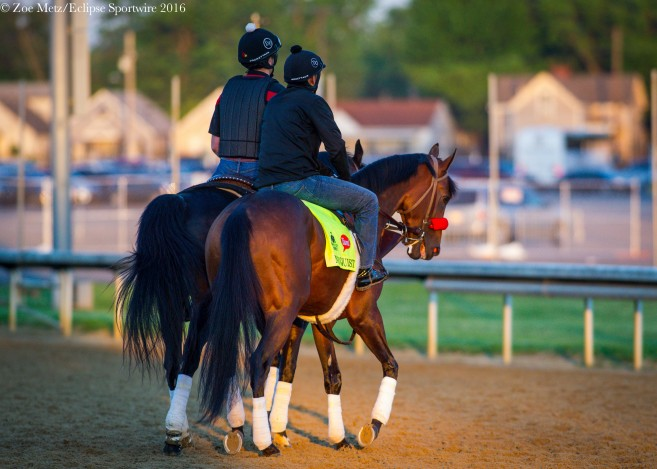 Stable Notes By Ed Golden Sunday May 8 2016 Santa