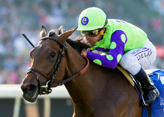 1 Million Breeders Cup Juvenile Turf Fillies Quotes
