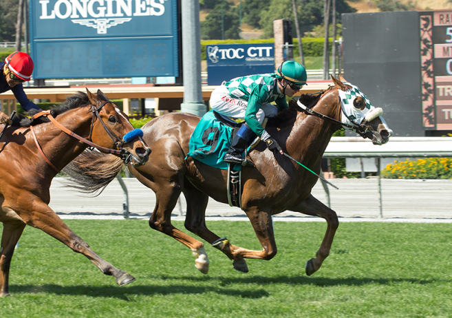 Harris Farms Homebred Record Highs All Heart In Winning