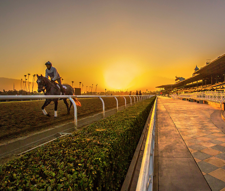 Santa Anita Main Track Set To Re Open For Training Sept 3