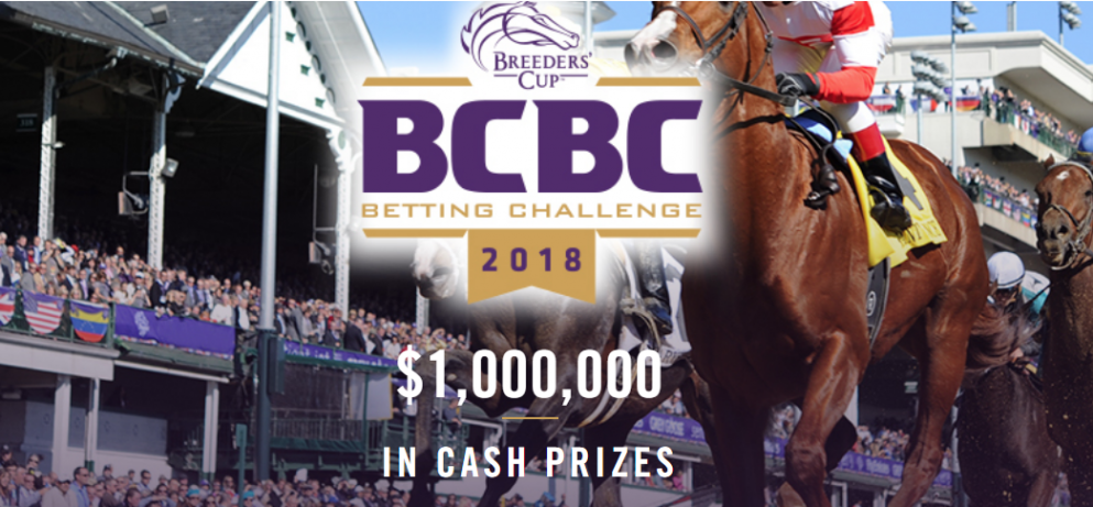 Bet on the breeders cup griffith by election betting odds