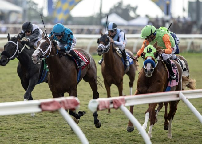 Eastern Filly Mae Never No Amp Stakes Placed Hartel Head