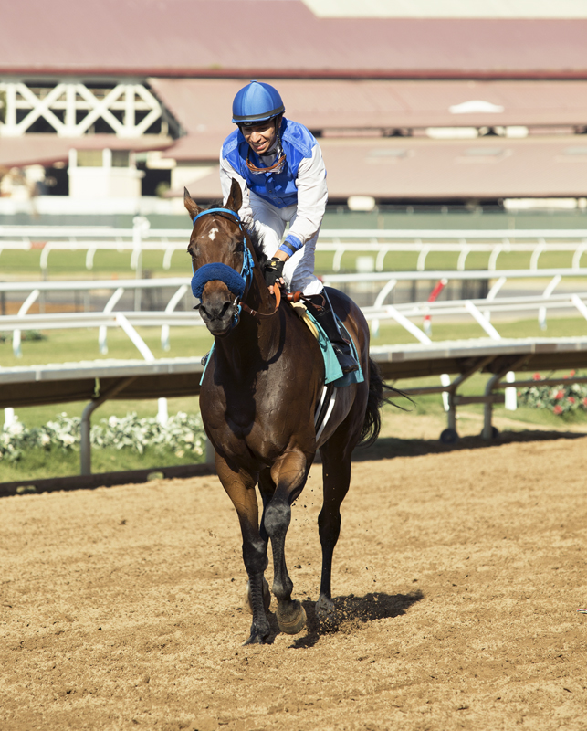 Stable Notes By Ed Golden Thursday Oct 18 2018