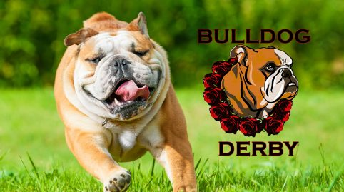 The Bulldog Derby at Santa Anita Park