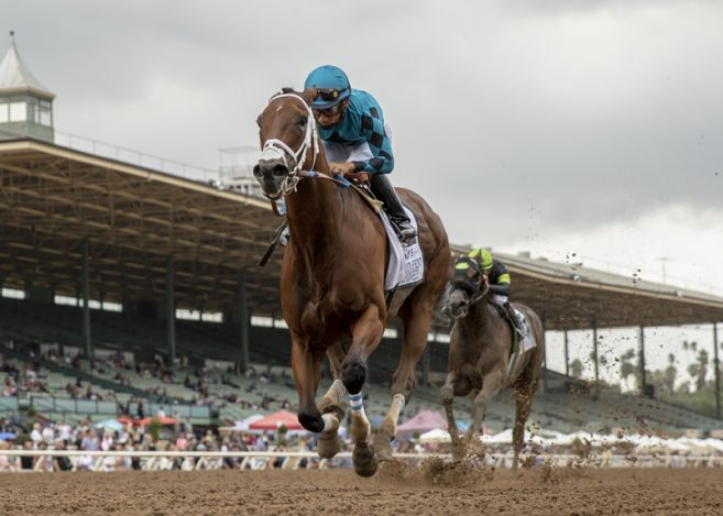 Two Time Breeders Cup Sprint Champ Roy H Back To Defend