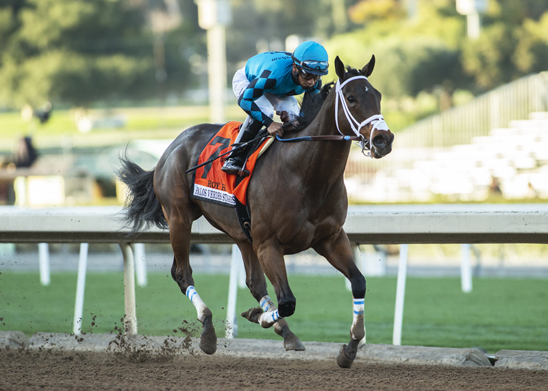 Palos Verdes Stakes Quotes Saturday January 19 2019