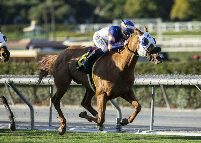 Alexander S Homebred S Y Sky Goes Gate To Wire To Take