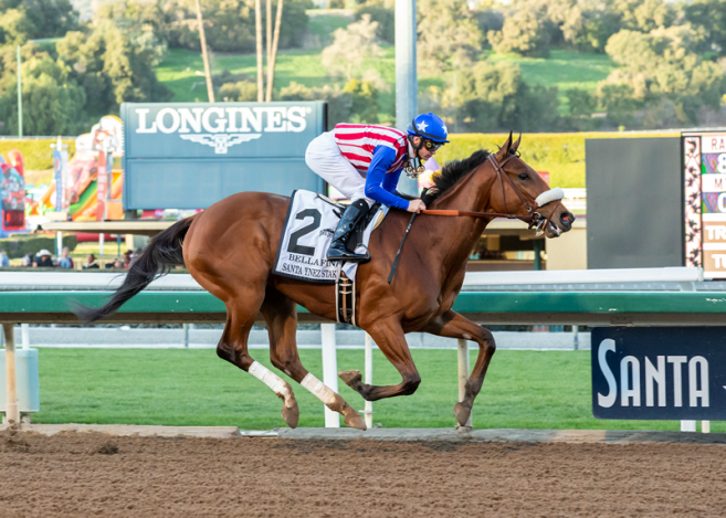 Stable Notes By Ed Golden Thursday February 7 2019