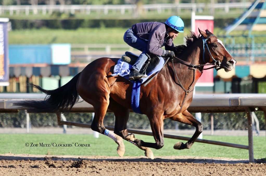 Stable Notes By Ed Golden Sunday February 10 2019