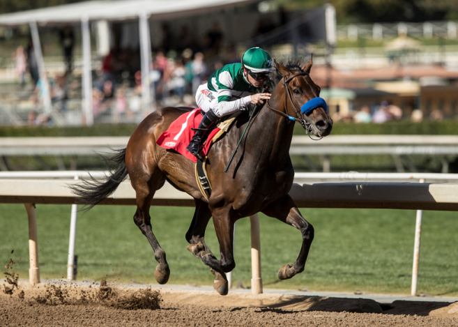 Classy Edwards Going Left Amp Upstart Surfing Star Headline Sunday S 100 000 Tiznow Stakes At One Mile Santa Anita Park