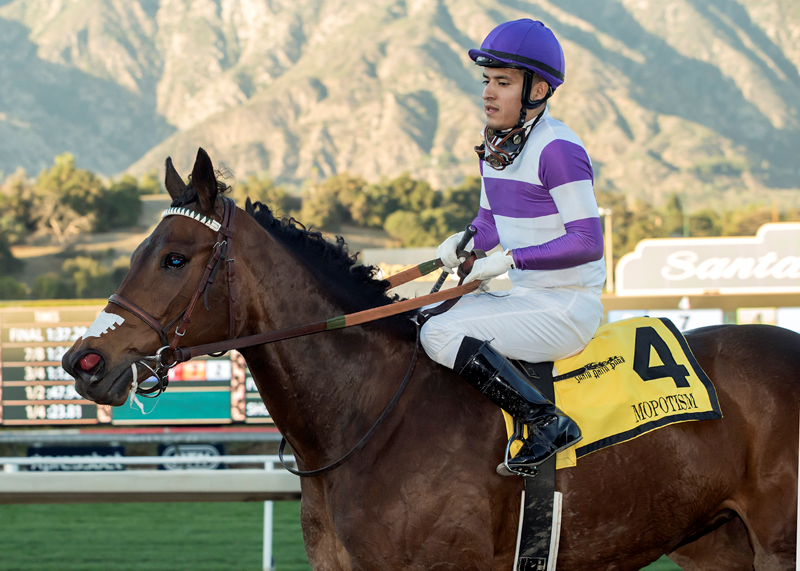 Stable Notes By Ed Golden Thursday February 14 2019