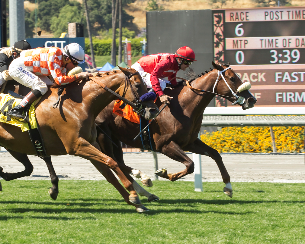 Stable Notes By Ed Golden Monday February 18 2019