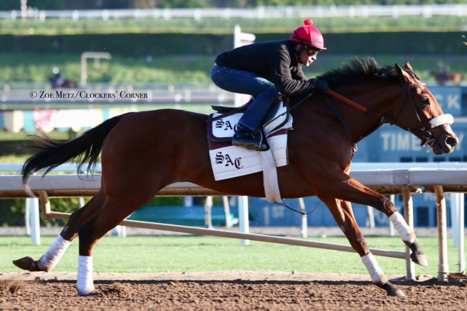 Stable Notes By Ed Golden Saturday March 30 2019