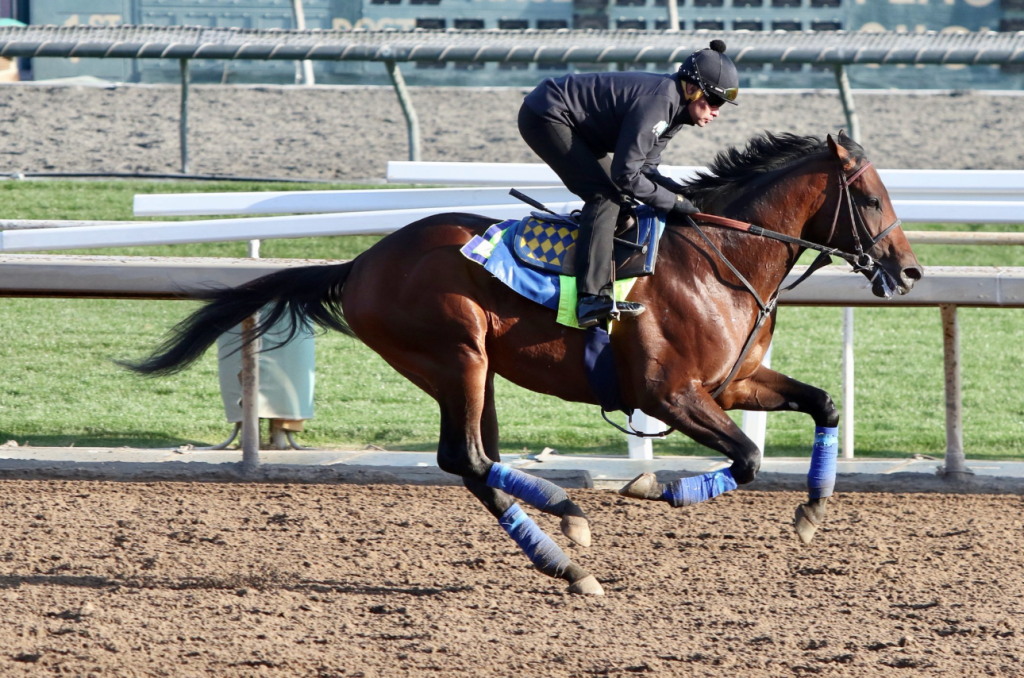 Stable Notes By Ed Golden Friday March 1 2019 Santa