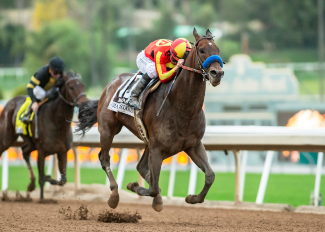 Stable Notes By Ed Golden Sunday March 3 2019 Santa