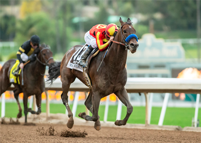 Stable Notes By Ed Golden Tuesday March 26 2019