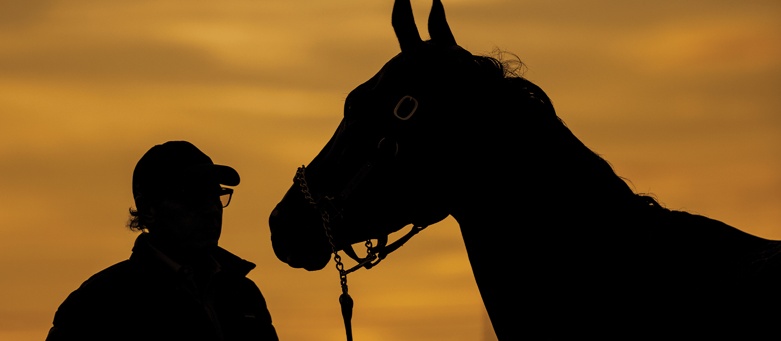 Facts About Unprecedented Horse Racing Reforms in California
