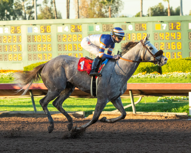 Stable Notes By Ed Golden Friday October 11 2019