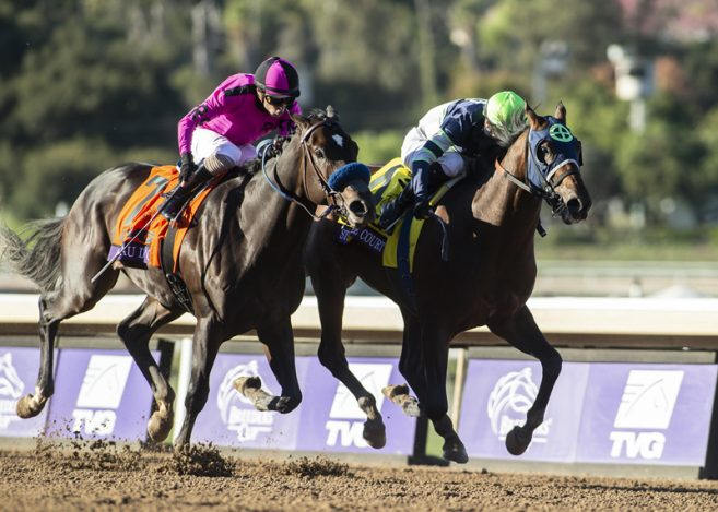 Santa Anita Based Storm The Court Is Named 2 Year Old