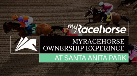 The MyRacehorse Ownership Experience
