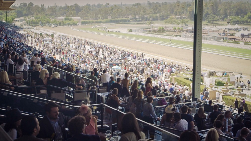 The Turf Terrace