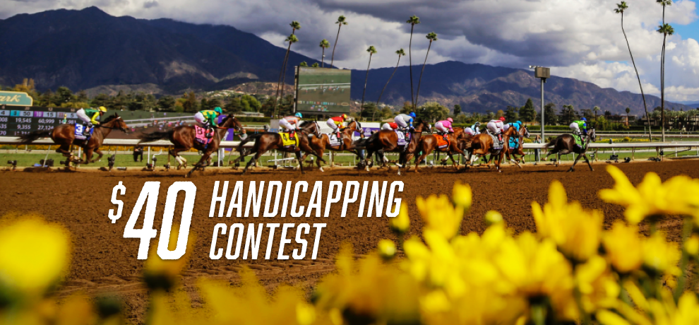 $40 Handicapping Contest