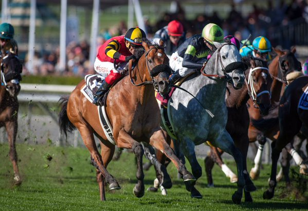 King of the West Handicapping