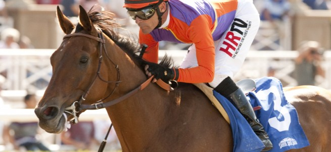 Multiple Eclipse Champion Beholder Heads Grade I Zenyatta