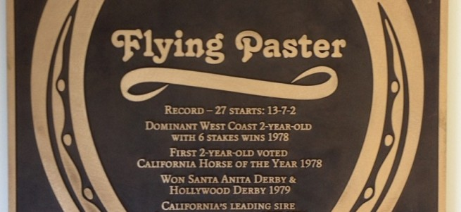 Flying Paster