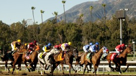 DAILY RACING FORM'S JAY HOVDEY TO SIGN 'LONG REIN' AT SANTA ANITA ON SEPT. 27; MULTIPLE ECLIPSE AWARD WINNER TO BE IN EAST PADDOCK GARDENS BEGINNING AT 11 A.M.