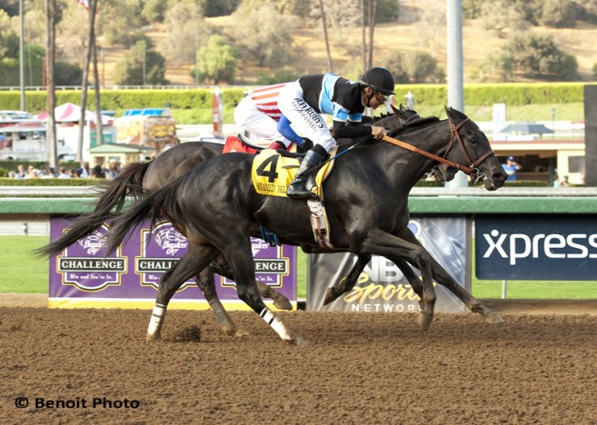 Shared Belief a2 72 copy