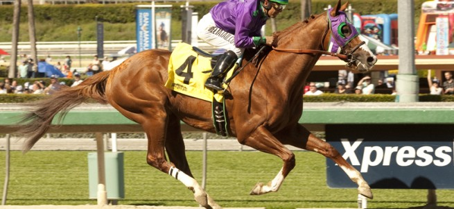 California Chrome a2 72
