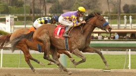 SANTA ANITA STABLE NOTES – (SATURDAY OCTOBER 25, 2014)
