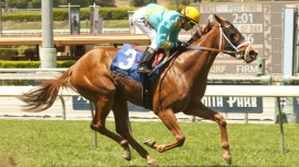 SANTA ANITA STABLE NOTES – (FRIDAY OCTOBER 31, 2014)