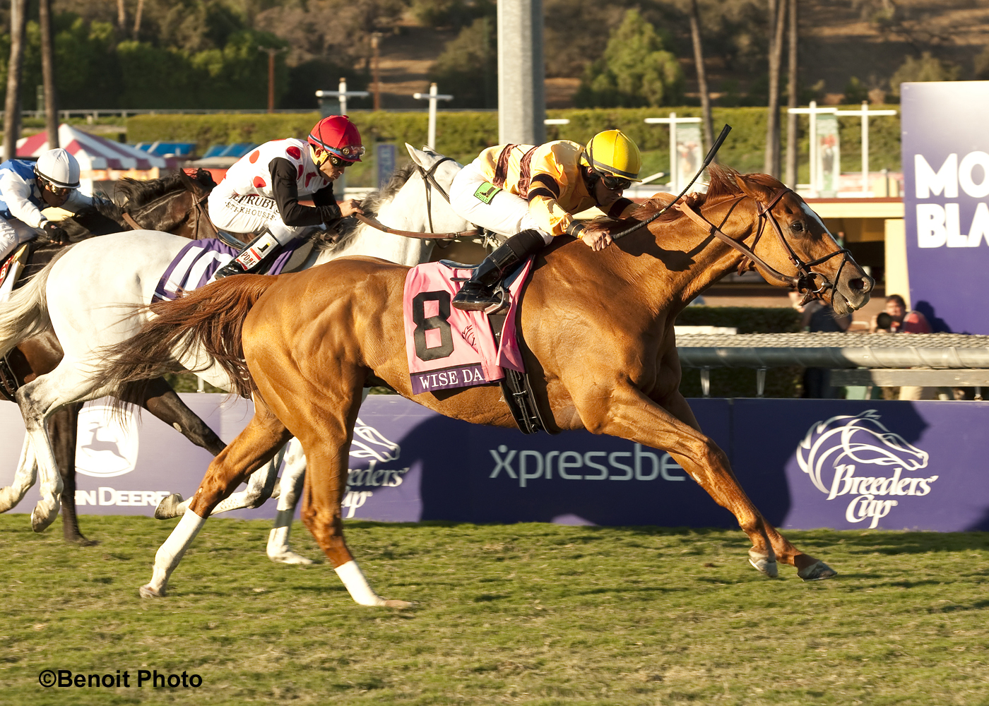 Santa Anita Stable Notes Sunday October 5 2014
