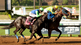 LONGSHOT AIR OF ROYALTY PROVES GAMEST LATE & WINS $58,000 COOPER CANYON PURSE BY NECK UNDER DELGADILLO; CAFARCHIA HOMEBRED, TRAINED BY GLATT, GETS SIX FURLONGS IN 1:09.70