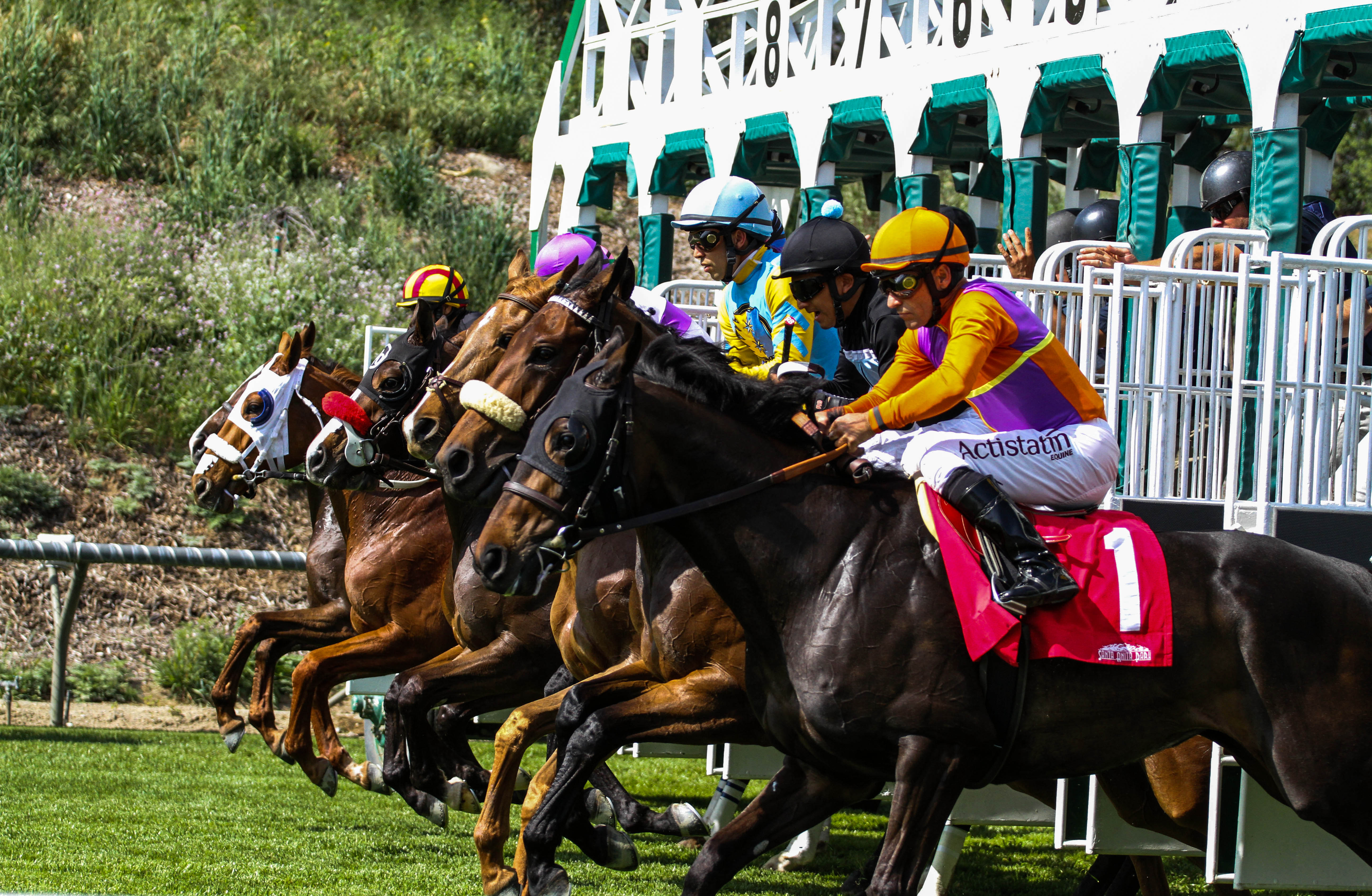 Santa Anita Winter Meet Stakes Schedule Announced Grade I