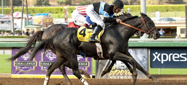 Shared Belief a2 72