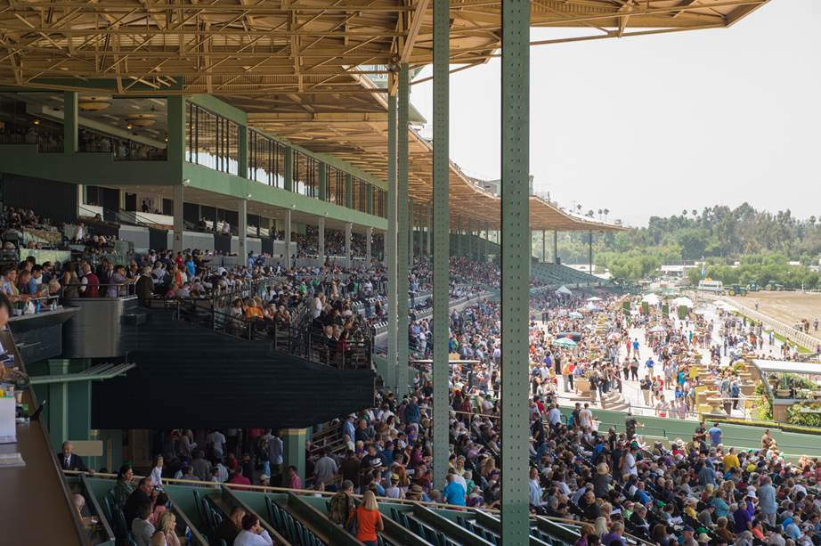 how to get grandstand box to hastings park racetrack